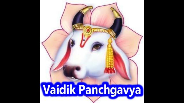 PVS_2018_5619 image