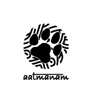 PVS_2018_7266 image